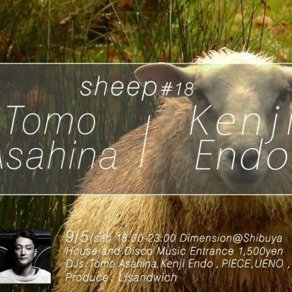 sheep #18 with Tomo Asahina